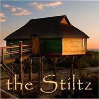 The Stiltz