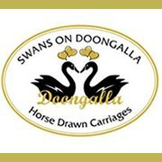Swans on Doongalla Horse Drawn Carriages