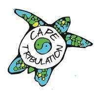 Paddletrek Kayak Adventures - Cape Tribulation