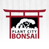 Plant City Bonsai