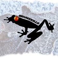 Brunskills