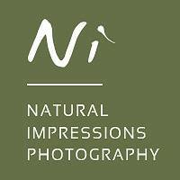 Natural Impressions Photography