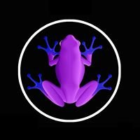 We #followthefrog project