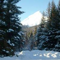 Alaska Glacier Creek Lodge