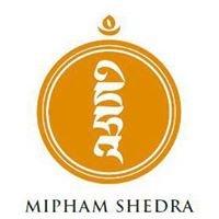 Mipham Shedra