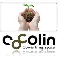 cocolin ~志-Link~