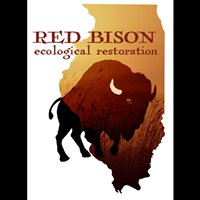 Red Bison Ecological Restoration