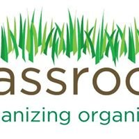 Baruch Grassroots