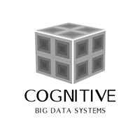 Cognitive Big Data Systems Inc.