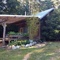 Sue's Off-Grid Garden Cottage