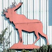 Montesano Moose Lodge 1210