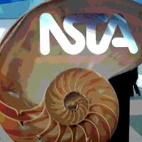 Rhode Island College Student Chapter of NSTA