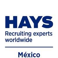 Hays México Reclutamiento Interno - Now Hiring