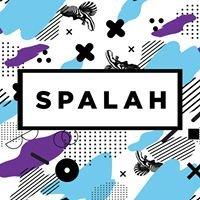 Spalah: образовательный хаб и коворкинг. Днепр