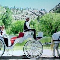 Colorado Carriage and Wagon