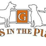 Paws in the Plaza Gahanna