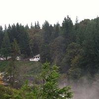 Snoqualmie Falls - The Falls