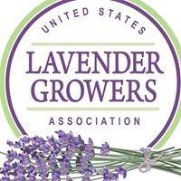 United States Lavender Growers Association (US Lavender)