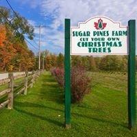 Sugar Pines Farm