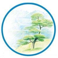 Tree Song Yoga