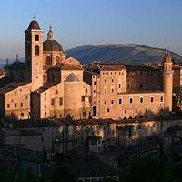 Palazzo Ducale, Urbino