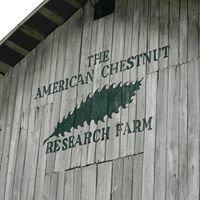 Southwest Virginia Restoration Branch of the American Chestnut Foundation