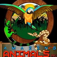 Amazing Animals Inc.