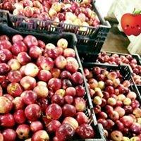 Turkey Ridge Organic Apple Orchard