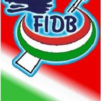 Federazione Italiana Dragon Boat