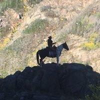 Beartooth Back Country Horsemen of Montana