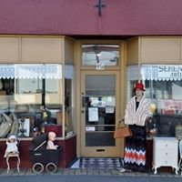 Serendipity Antiques & Collectables Timaru