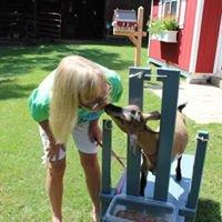 Sweet Bleats Nigerian Dwarf Goats