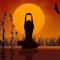 Yoga Plus LLC
