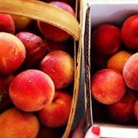 Ken Chappell's Peaches