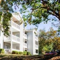 Arbor View Apartments