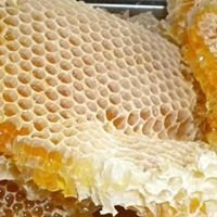 White County Arkansas Beekeepers