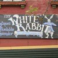 White Rabbit Trading CO