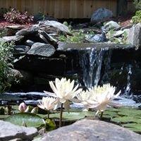 Country Gardens - Water Garden Specialist