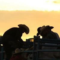 Irene Rodeo Association