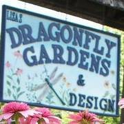 Lisa's Dragonfly Gardens & Design llc