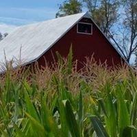 Right Choices Corn Maze