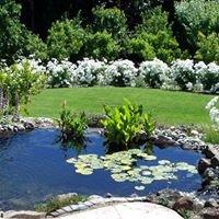 Ripple Effect Water Gardens
