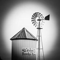 Bowles Farms - Corn Maze