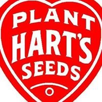 Plant Hart's Seeds
