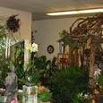 Thornhill Flower and Garden Shop