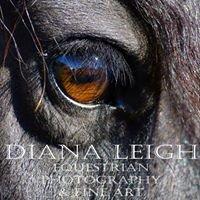 Diana Leigh Equestrian Photography