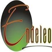 The Endeleo Institute