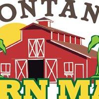 Montana Corn Maze