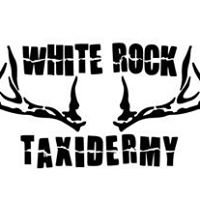 White Rock Taxidermy