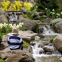 Dreamscapes Watergardens